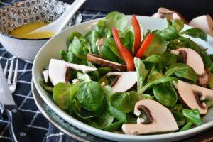 Makanan vegetarian yang mengambil sumber dari Nabati yang menyehatkan